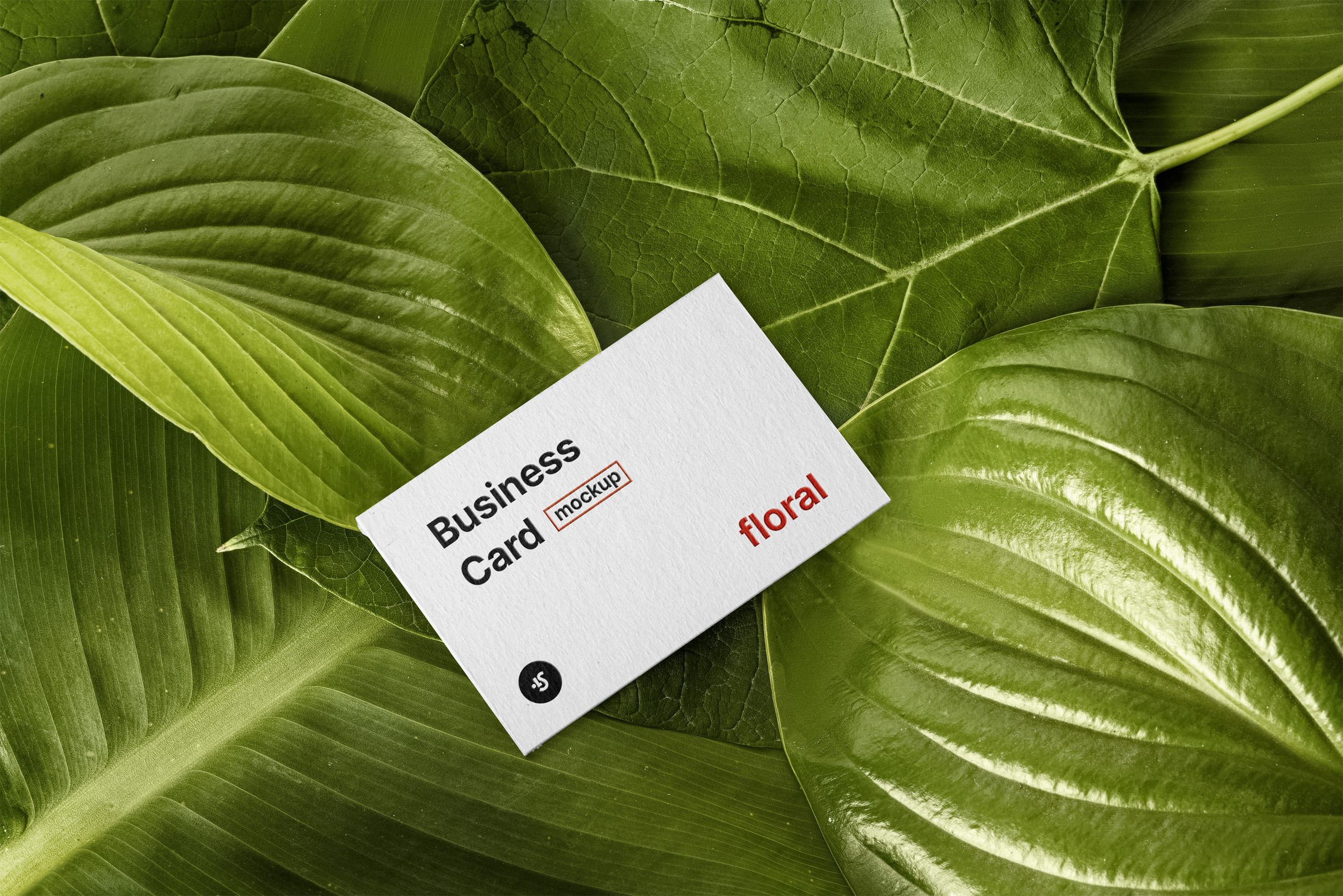 Free Download Floral Business Card Mockup PSD