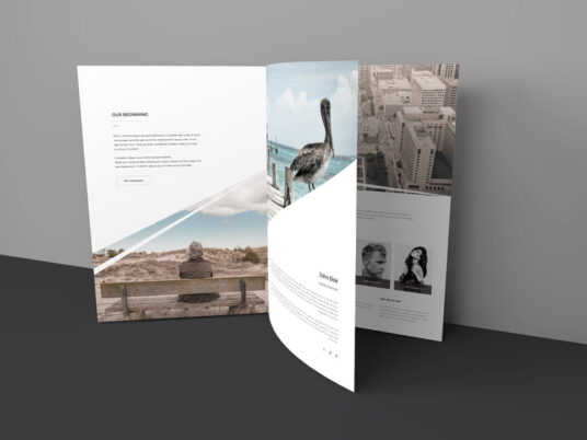 Free Download Trifold Brochure Mockup PSD