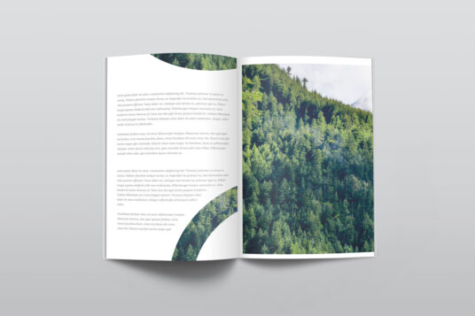 Free Download Two Open Page Mockup PSD