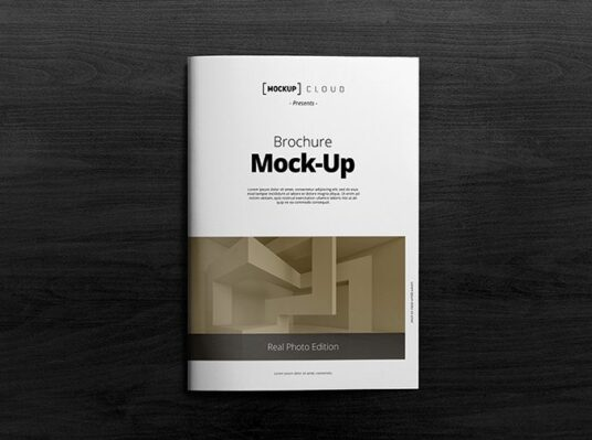 Free Download Two Page A4 Brochure Mockup PSD